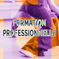B-pedagogie-FORMATION-PROFESSIONNELLE-Haim-Adri